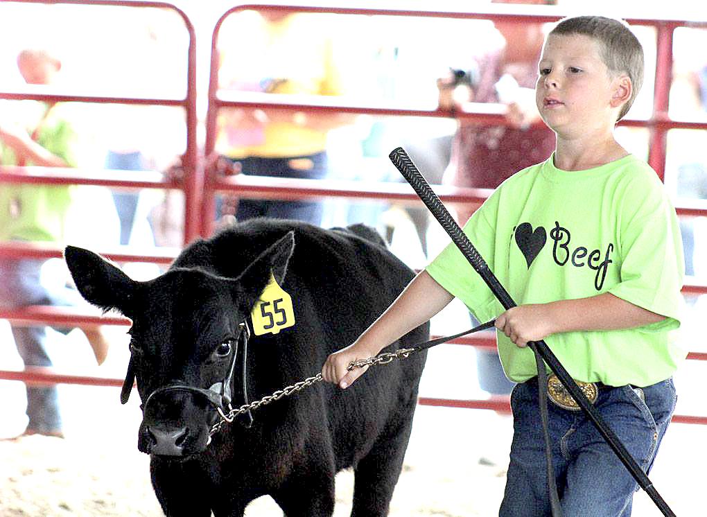 163rd Annual Clayton County Fair Runs Aug 2 7 In National